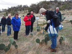 Ian Grenda demonstrating Wheel Cactus injecting technique